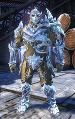 gw2-ice-encasement-outfit-norn-male