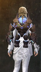 gw2-scruffy-backpack