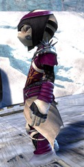 gw2-rox's-pathfinder-outfit-asura-male-2