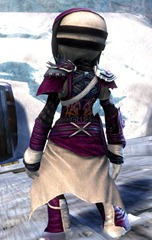 gw2-rox's-pathfinder-outfit-asura-male-3