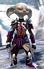 gw2-rox's-pathfinder-outfit-asura-male-4