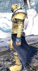 gw2-rox's-pathfinder-outfit-norn-male-2