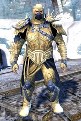 gw2-rox's-pathfinder-outfit-norn-male