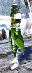 gw2-rox's-pathfinder-outfit-sylvari-male-2