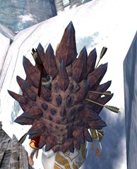 gw2-beastslayer-shield-skin-2