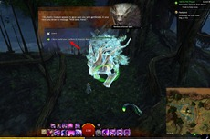 gw2-awakenng-the-druid-stone-achievement-guide-4