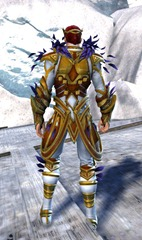 gw2-kasmeer's-regal-outfit-human-male-3