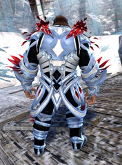 gw2-kasmeer's-regal-outfit-norn-male-3