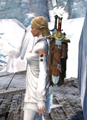 gw2-mercenary-backpack-2