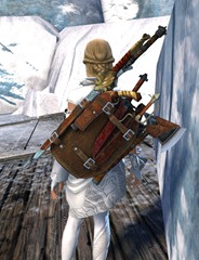 gw2-mercenary-backpack