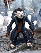 gw2-outlaw-outfit-charr-4
