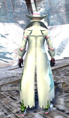 gw2-outlaw-outfit-human-male-3