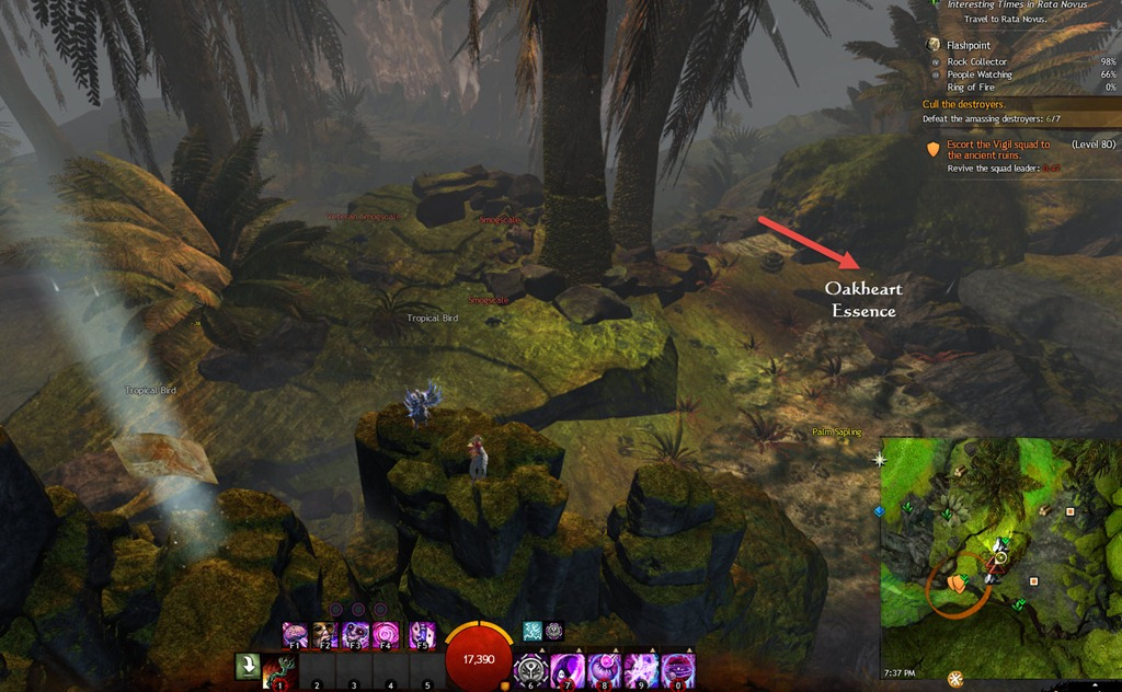 Gw2 People Watching Achievement Guide Time Keepers Gaming