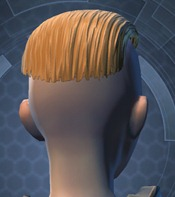 swtor-new-hair-styles-may-2-unisex-style-3