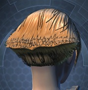 swtor-new-hair-styles-may-2-unisex-style-7