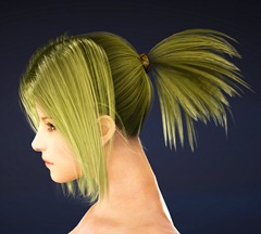 bdo-mystic-class-hairstyle-4