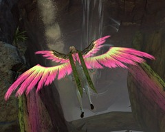 gw2-feathers-of-the-zephyr-glider