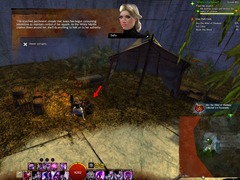 gw2-into-the-mind-of-madness-achievement-11