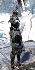 gw2-champion-of-tyria-outfit-hfemale-2