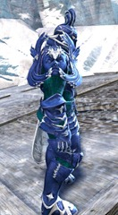 gw2-champion-of-tyria-outfit-norn-male-2