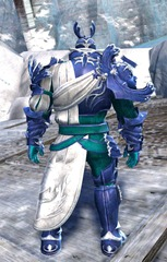 gw2-champion-of-tyria-outfit-norn-male-3