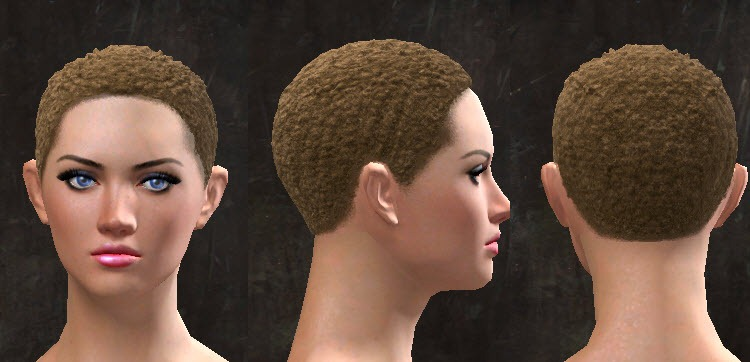 GW2 New Hairstyles and Faces for Path of Fire - Dulfy