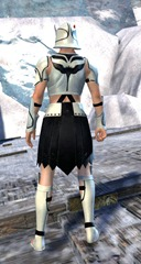 gw2-sunspear-outft-human-male-3