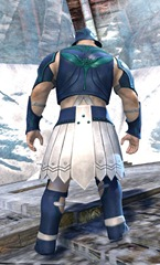 gw2-sunspear-outft-norn-male-3