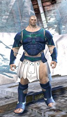 gw2-sunspear-outft-norn-male-4