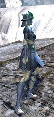 gw2-sunspear-outft-sylvari-female-2