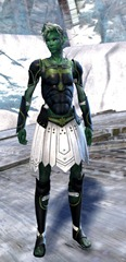 gw2-sunspear-outft-sylvari-male-4