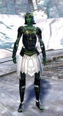 gw2-sunspear-outft-sylvari-male