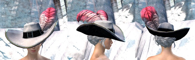 gw2-swaggering-hat-norn-female