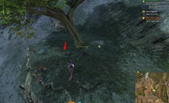 gw2-hidden-carrot-hunt-achievement-guide-1