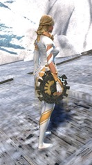 gw2-shifting-sands-focus-skin-2