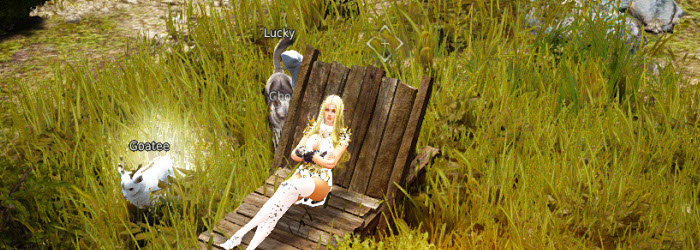 Black Desert Campsite Guide