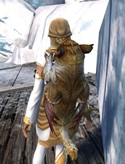 gw2-griffon-hatchling-backpack-2