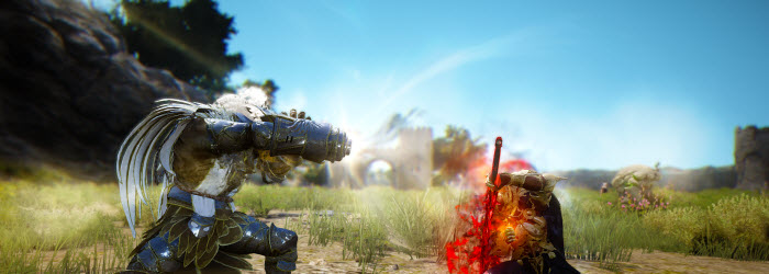 Black Desert Final Battle and Team Battle Systems