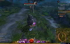 gw2-a-bug-in-the-system-achievements-guide-39.