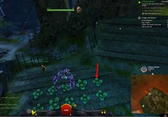 gw2-a-bug-in-the-system-achievements-guide-9