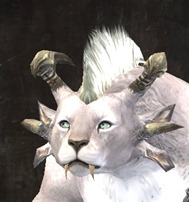 gw2-march-6-new-charr-face