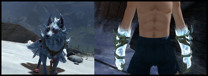GW2 Gemstore Update–Shrine Guardian Jackal and Exalted Gloves