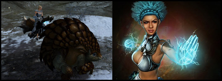 GW2 Gemstore–Tremor Armadillo Beetle Skin & Upcoming Items