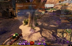 gw2-elegy-collection-guide-29