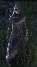 eso-witches-festival-guide-14