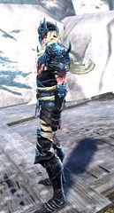gw2-haunted-armor-outfit-hmale-2