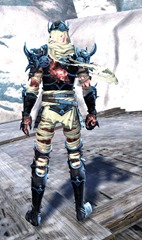 gw2-haunted-armor-outfit-hmale-3