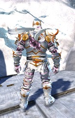 gw2-haunted-armor-outfit-norn-3