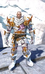 gw2-haunted-armor-outfit-norn-4