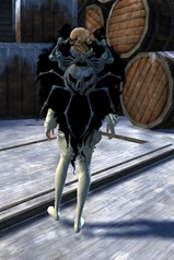 gw2-mad-realm-shield-3